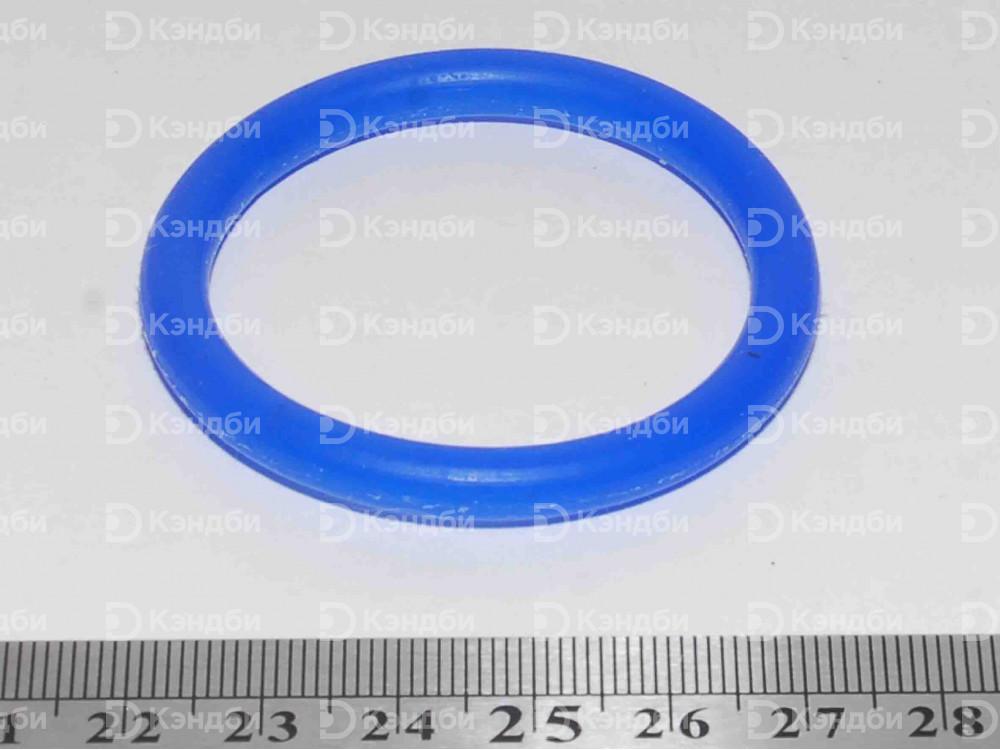 Кольцо 1 1/2 дюйма сливного крана котла Abat (120000019887, КПЭМ)